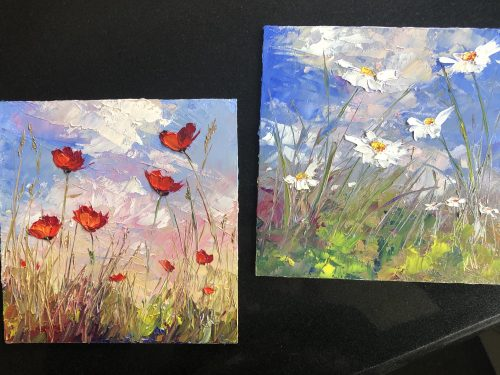 poppies & daisies