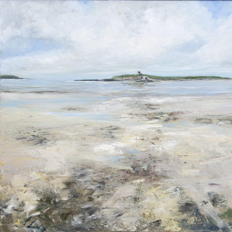 Shenick low tide